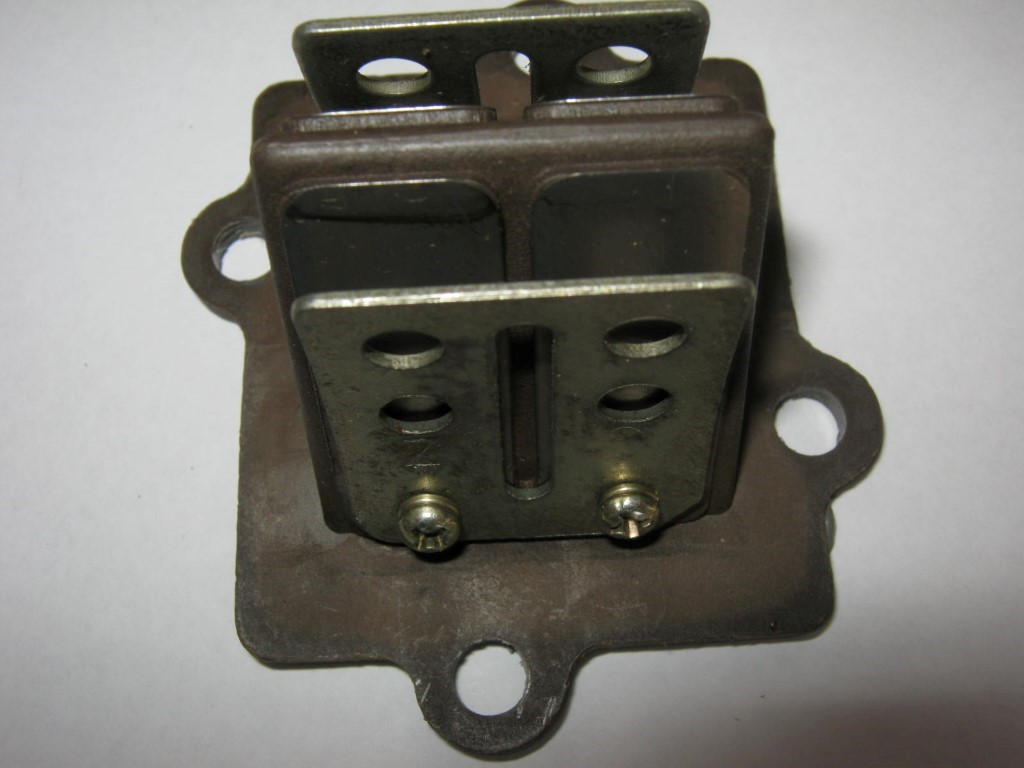 Reed Valve Assembly - 1PE40QMB